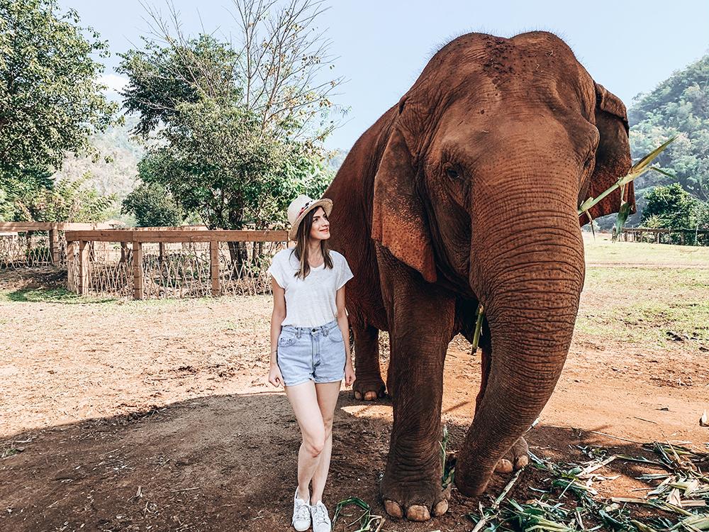 Elephant Nature Park portrait avec un éléphant